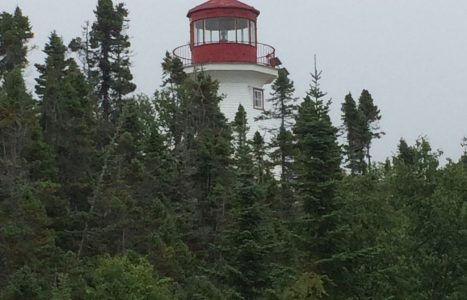 Otter Island – Old Dave's Harbour