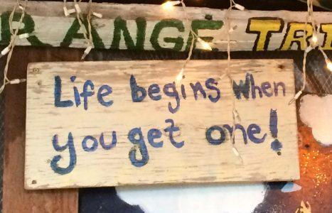 Got Life?