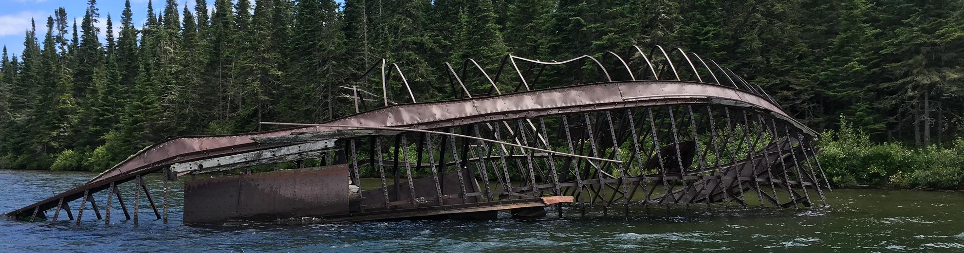 Michipicoten Island: Caribou at Last